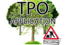 TPO Application