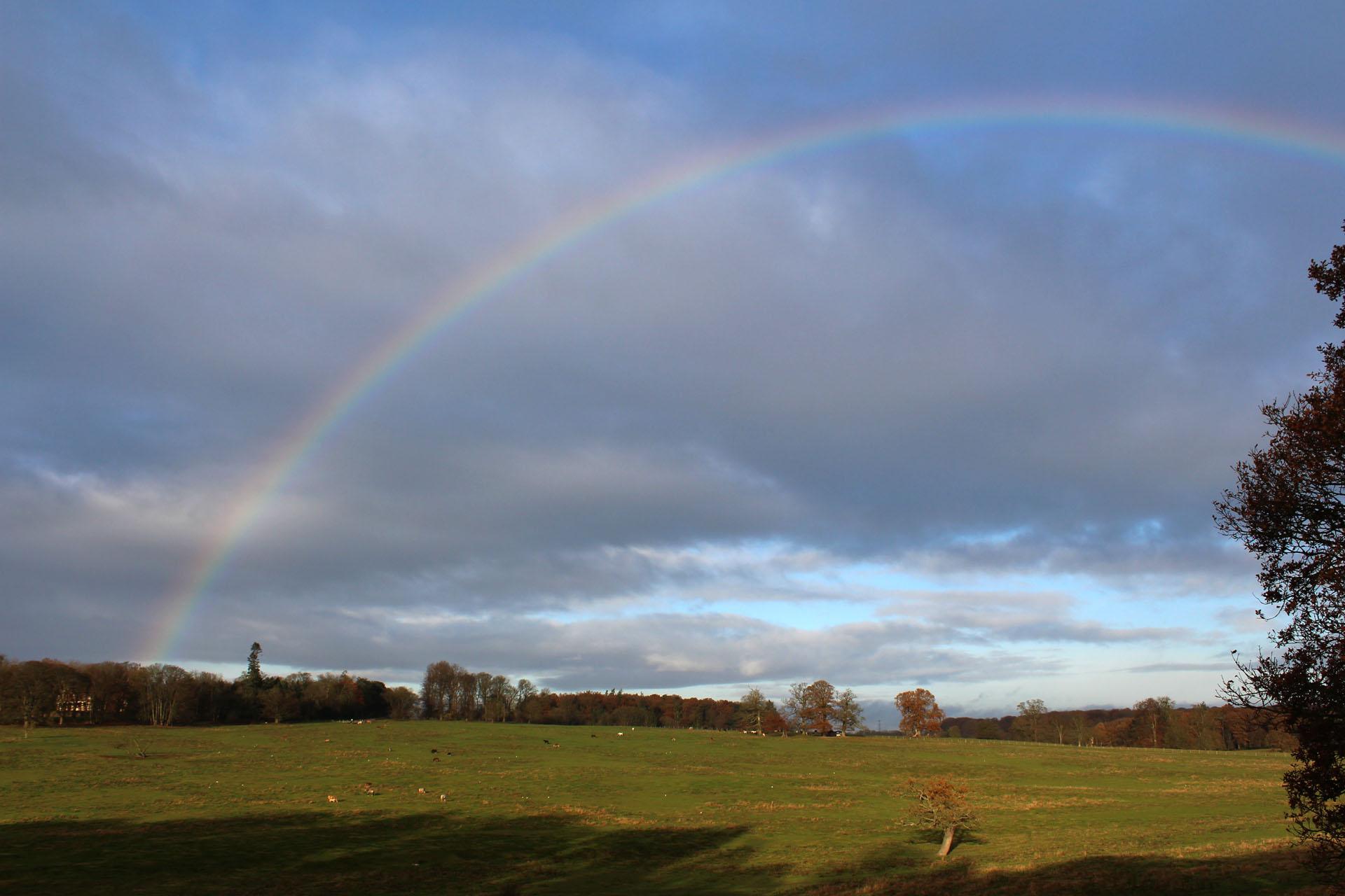 Bulstrode park rainbow
