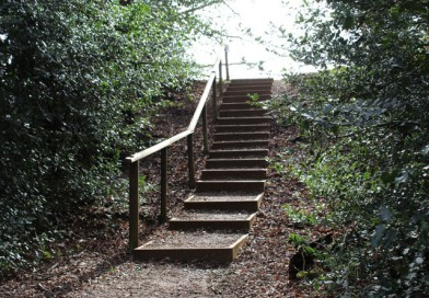 Steps to Camp