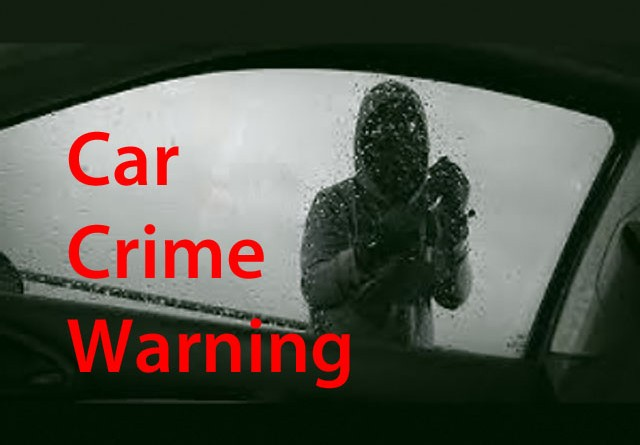 Car crime warning